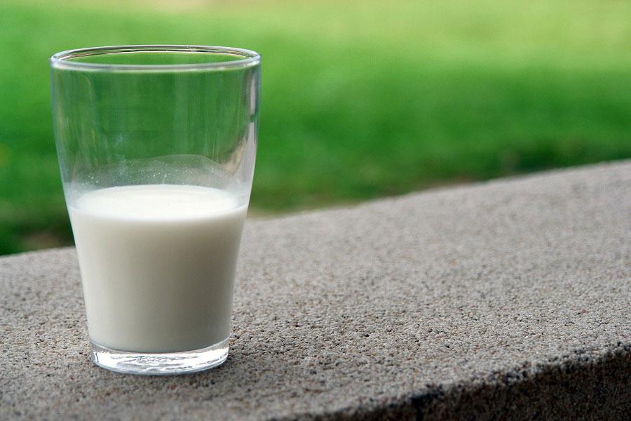 leche-lactosa