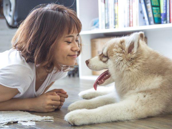 cancer-mama-perros (1)