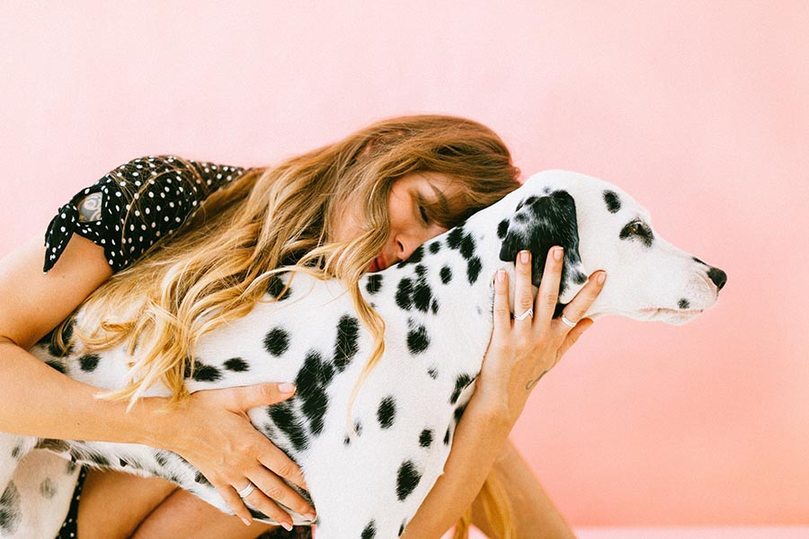 ¿Cómo y cuándo realizar una reanimación cardiopulmonar a tu perro? (RCP)